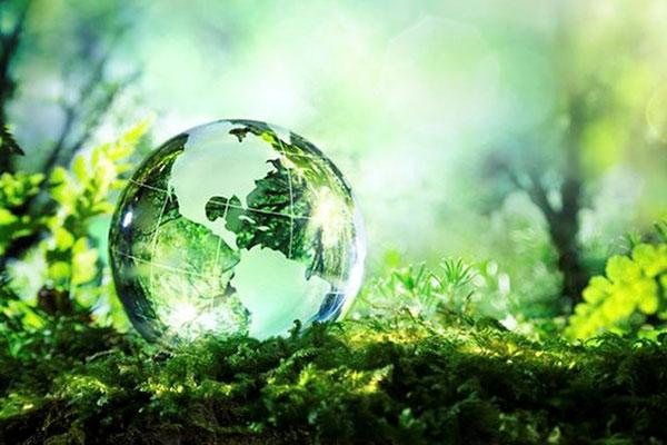 DB GROUPE Engagement environnemental